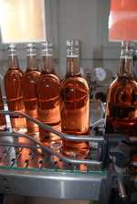 Paccot_bottling31